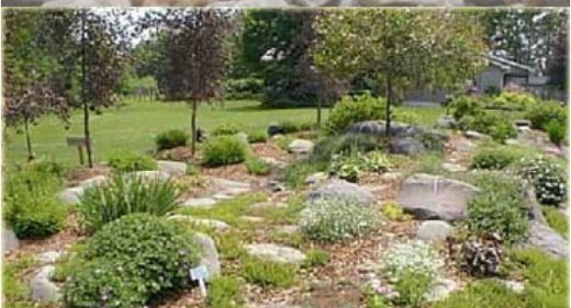 Plan for your Rock Garden