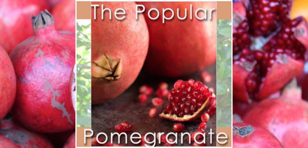 The Popular Pomegranate