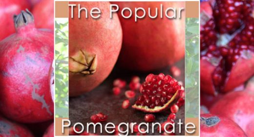 The Popular Pomegranate