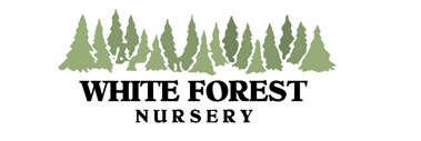 White Forest Nursery