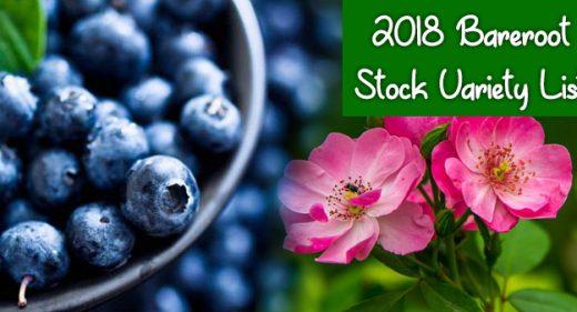 2018 Bareroot Stock Variety List